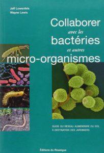 bactérie sol